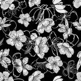 Vita, gråa svarta körsbärsröda blommor i orientalisk stil stock illustrationer