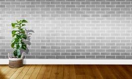 Vita gråa tegelstenväggar med trägolv och träd med naturligt ljus för bakgrundsfotografi arkivbilder