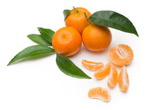 vita grunda tangerines för dof-isoleringsmakro Royaltyfria Foton