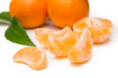 vita grunda tangerines för dof-isoleringsmakro Royaltyfri Bild