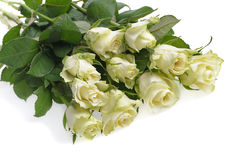 vita gruppro Royaltyfria Bilder