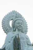Vita Guan Yin på Tha Ton Temple Arkivbild