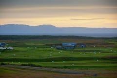 Vita Hay Rolls på det gröna fältet av Island Royaltyfria Bilder
