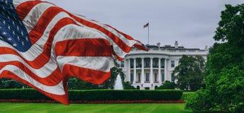 Vita Huset - Washington DCFörenta staterna arkivfoto