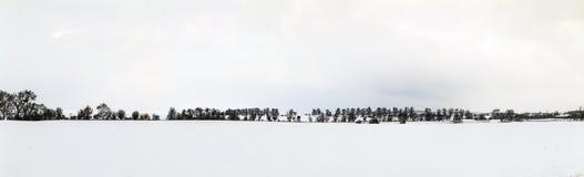 Vita iskalla träd i snö täckt landskap Arkivbilder