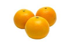vita isolerade apelsiner Royaltyfri Fotografi
