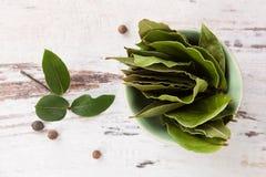 vita isolerade leaves för fjärd nya örtar Arkivfoto