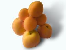 vita isolerade persikor för aprikosar bakgrund Fotografering för Bildbyråer