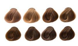 vita isolerade set toner för bakgrundsfärger hår toner Royaltyfri Bild