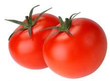 vita isolerade tomater Royaltyfri Bild