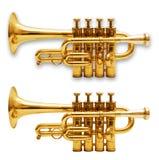 vita isolerade trumpeter Royaltyfri Foto