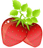 vita jordgubbar royaltyfri illustrationer