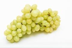 Vita kärnfria druvor på vit royaltyfria bilder