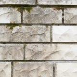 Vita kalkstentegelstenväggs fragment Royaltyfri Bild