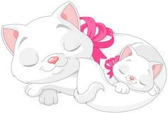 vita katter vektor illustrationer