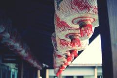 Vita kinesiska lyktor royaltyfri bild