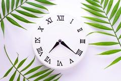 Vita klocka f?r tappning och sidor av en tropisv?xt Lekmanna- l?genhet, b?sta sikt royaltyfria bilder