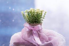 Vita konstgjorda blommor som är ordnade i mini- papp, lägger in Fotografering för Bildbyråer
