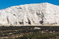 Vita kritaklippor i det Seaford huvudet Arkivfoton