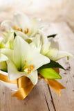 vita liljar Arkivfoto