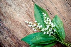 Vita liljekonvaljer på tappningträbakgrund Arkivbilder