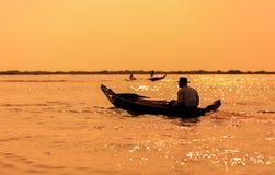 Vita in linfa di Tonle Fotografie Stock