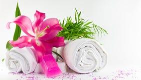 vita magentafärgade handdukar för lilium Arkivfoton