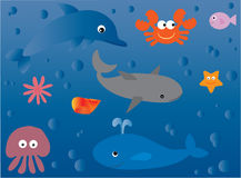 Vita marina Immagini Stock Libere da Diritti