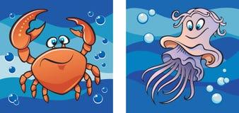 Vita marina: granchio e meduse Immagine Stock Libera da Diritti
