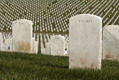 vita militära tombstones royaltyfria bilder