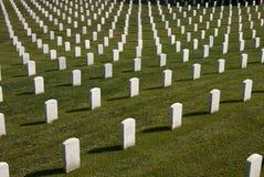 vita militära tombstones arkivfoton