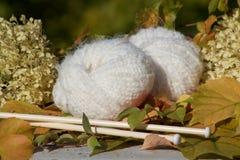 Vita mjuka bollar av woll som är klara för handarbete royaltyfria bilder