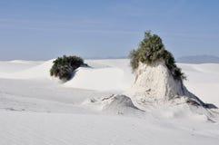 vita nationella nya sands för mexico monument Royaltyfri Foto