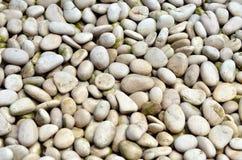 Vita naturliga stenar Arkivfoto