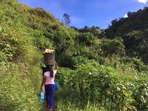 Vita nella giungla filippina, vaso di trasporto della donna sulla sua testa fotografia stock libera da diritti