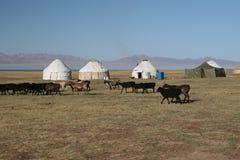 Vita nomade Immagini Stock Libere da Diritti