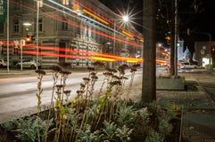 Vita notturna della città fotografie stock libere da diritti
