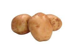 vita nya isolerade potatisar arkivfoton