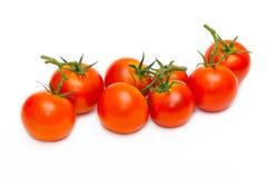 vita nya isolerade tomater Royaltyfri Bild