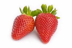 vita nya jordgubbar för bakgrund Royaltyfria Bilder