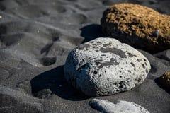 Vita och gula stenar på den svarta sanden på stranden av en stad Vik i Island arkivfoton