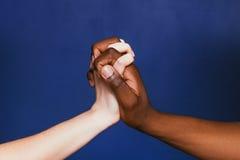 Vita och svarta händer som tillsammans knäppas fast, tätt upp arkivbild