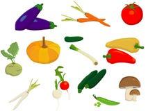 vita olika grönsaker för bakgrund Arkivbild