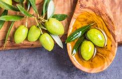 vita olive olivgrön för bakgrundsolja Arkivfoton