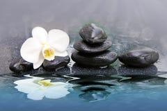 Vita orkidéblommor reflekterade i vattnet bakgrundsstearinljuset blommar brunnsorthanddukyellow Fotografering för Bildbyråer
