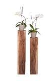 Vita orkidér i keramiska krukor på träställningar royaltyfri bild