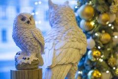 vita owls Royaltyfri Bild