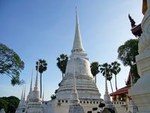 Vita pagoder i ayutthaya Royaltyfri Foto