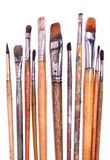 vita paintbrushes Arkivbild