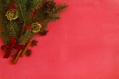 vita röda stjärnor för abstrakt för bakgrundsjul mörk för garnering modell för design Julpynt och gran förgrena sig på en röd kan Arkivbild